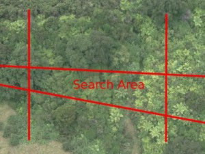 Hex search area