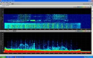 Trentham interference signal